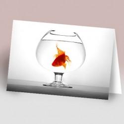 کارت پستال 12×17 (تنگ و ماهي)