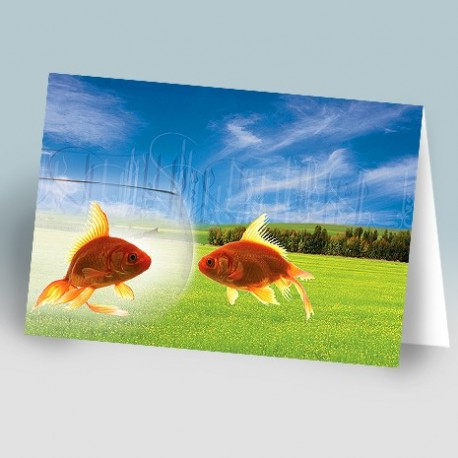 کارت پستال 14.5×21 (دو ماهي زمينه چمنزار)