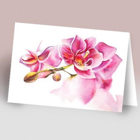 کارت پستال 14.5×21 (گل صورتي رنگ روغن زمينه سفيد)