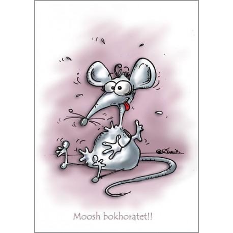 کارت پستال فانتزي 10.5×15 موش بخورتت